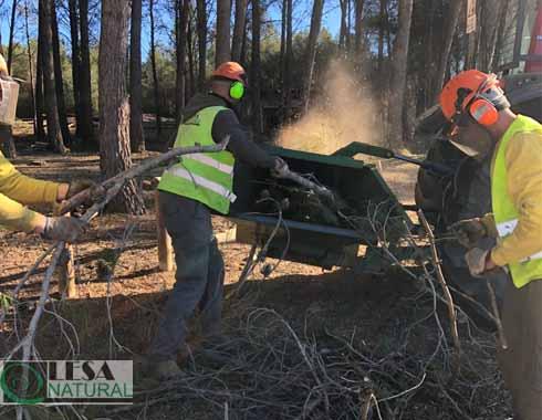 Astillado manual con tractor